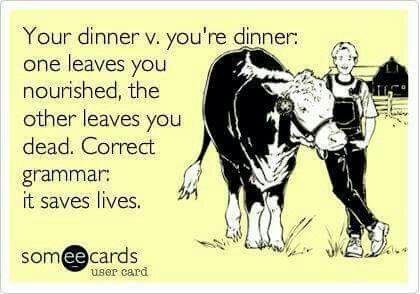Poor grammar memes